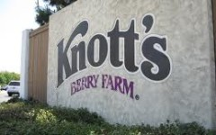 Knott's Berry Farm Requirements