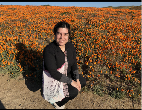 Superbloom in California