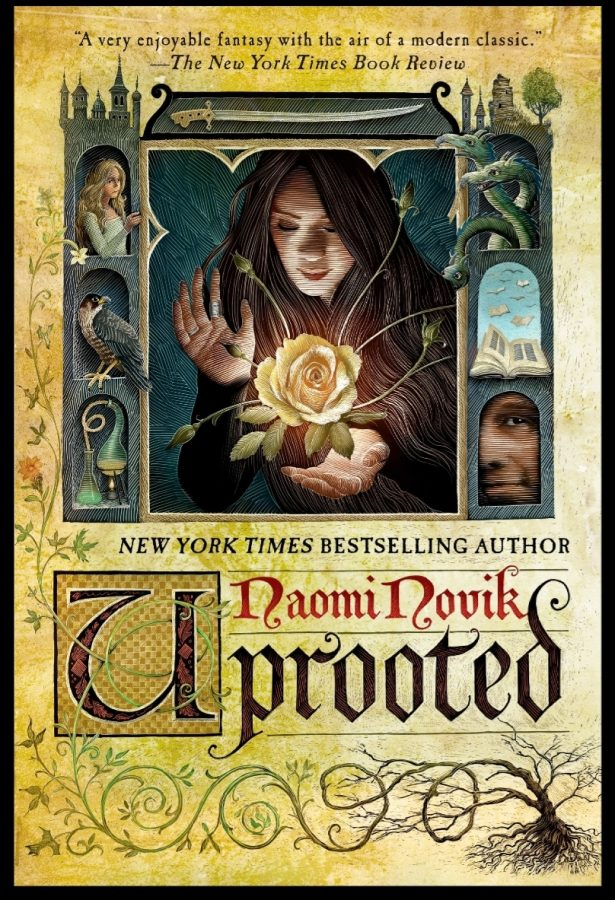 This is what the book cover looks like. I think it looks fancy with Agnieszka holding her hallucination spell, which is a flower at the moment.