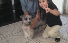 My brother and me with our dog when we were little.